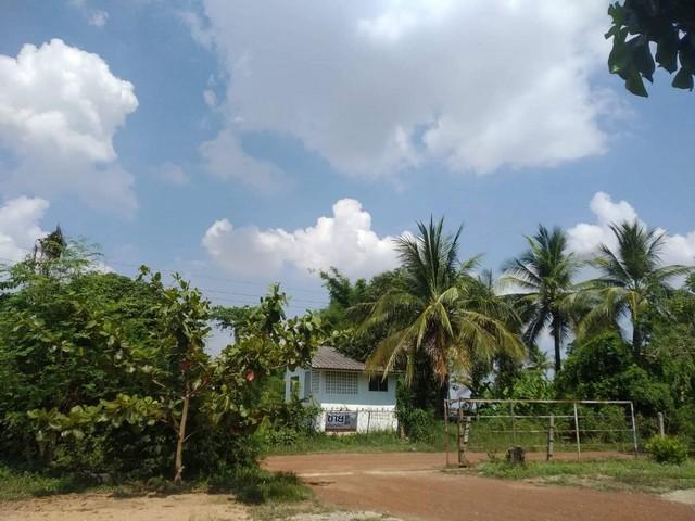ขายบ้าน 2 ชั้น พร้อมสวน  จังหวัดพิษณุโลก